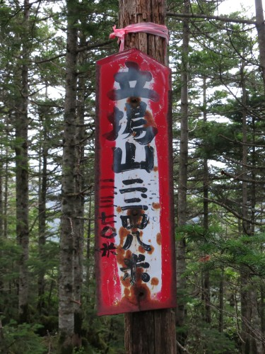 八ヶ岳・阿弥陀岳南稜